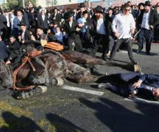 תיעוד דרמטי: נפילת הסוס ופציעת המפגין