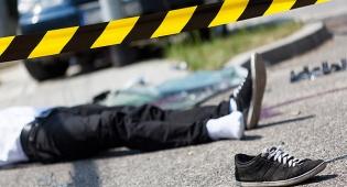 עלייה דרמטית בקטל בכבישים