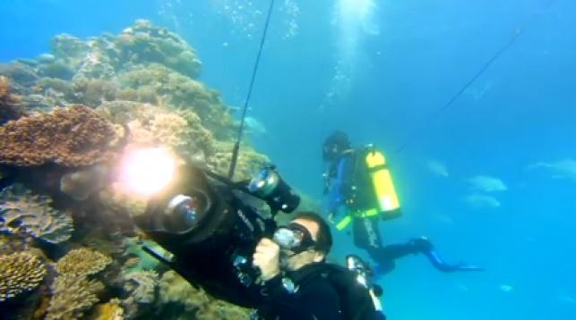 'גוגל', גם מתחת למים
