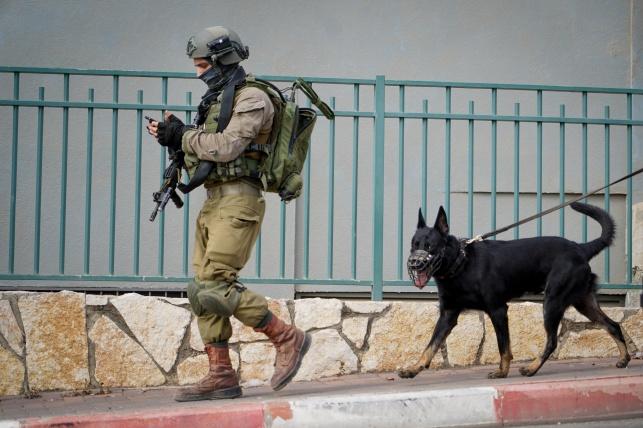 כוחות הביטחון בזירת הפיגוע, הבוקר