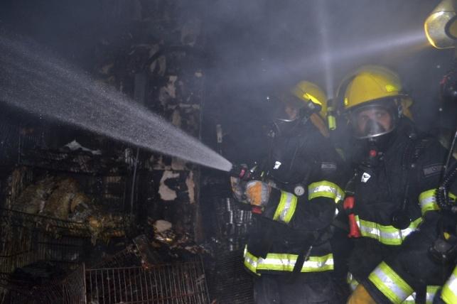 שריפה בשכונת גאולה: נגרם נזק כבד