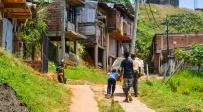 קאלי, קולומביה - ישראלים ניצלו מחטיפה בג'ונגל בקולומביה