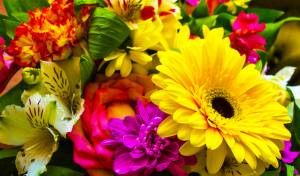 את מי אתם רוצים לפנק בזר פרחים מתנה? פיוזטי. אילוסטרציה