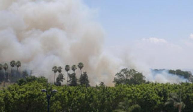 זירת השריפה (צילום: גולש כיכר השבת)