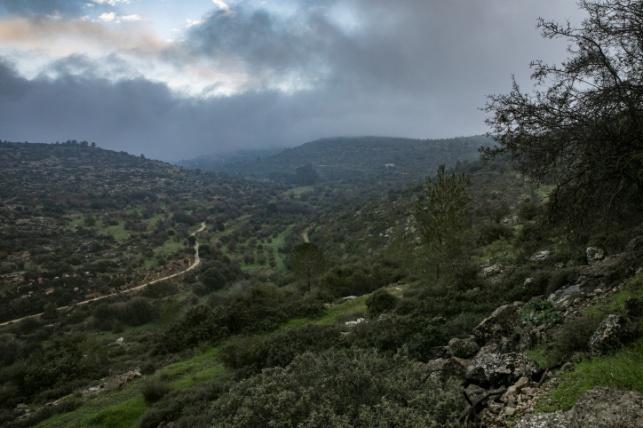 גשום בהרי ירושלים, ארכיון