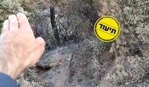 מתחזק החשד: שריפת הענק הצתה מכוונת