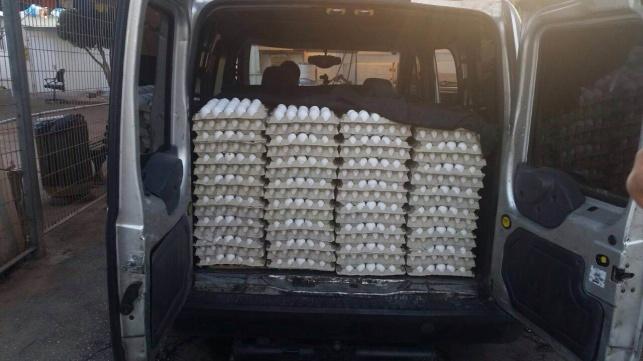 הביצים שנתפסו