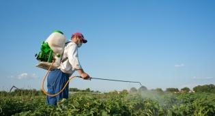 """האם עבודות הריסוס של החקלאי הובילו לפרקינסון? אילוסטרציה - ביה""""ד לעבודה: קשר בין פרקינסון לבין עבודות ריסוס"""