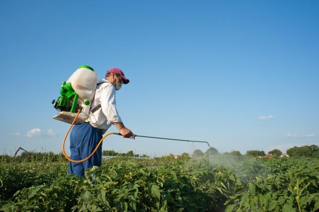 האם עבודות הריסוס של החקלאי הובילו לפרקינסון? אילוסטרציה