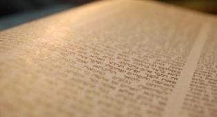 """הדף היומי: מס' סנהדרין דף ס""""ג יום ראשון כ""""ו אלול"""