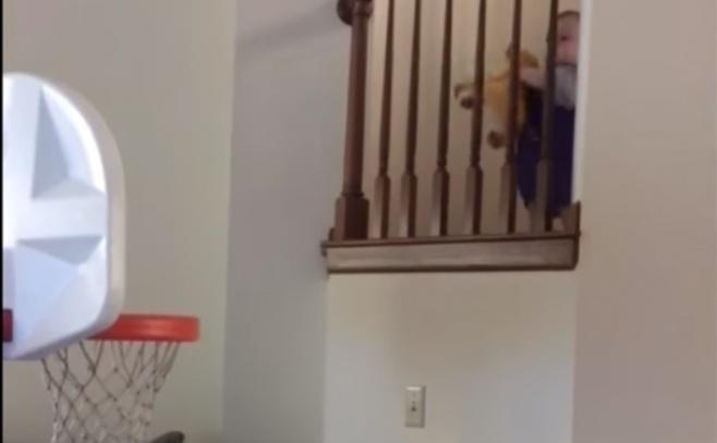 צפו בתינוק שצולף כשחקן כדורסל מקצועי