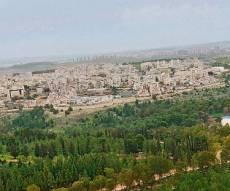 יער קולה והעיר אלעד - ה'ירוקים' יוצאים למאבק נגד הרחבת אלעד
