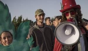 מפגינים בעד שימוש חופשי בקנאביס. אילוסטרציה