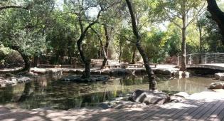 מעיינות, עתיקות ופעילויות. תל דן - פעילות היסטורית ושפע מים - תל דן