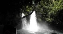 טיול לבין הזמנים: ה'בניאס' של הישיבישערס