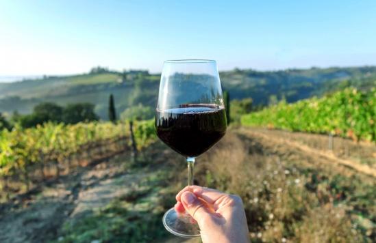 איך מרגישים ומתארים מינרליות ביין?