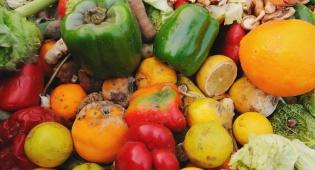 אילוסטרציה - מזעזע: שליש מהמזון המיוצר - מושלך לפח