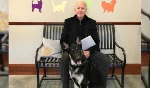 ביידן עם הכלב בעת אימוצו