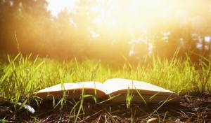 מה לימד הבעל שם טוב את תלמידיו ביער?