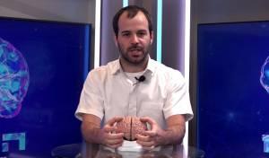 'המוח', פרק 3: איך נקבל החלטה מוסרית?