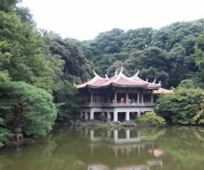 טיול מצולם ליפן המרהיבה: גלריה ענקית