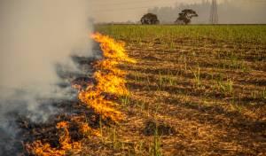 שריפות בעוטף; בעזה תיעדו שיגור הבלונים