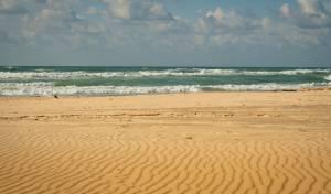 חוף הים באשקלון