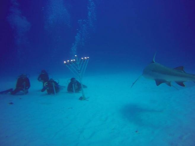 להדליק עם כרישים: נר חנוכה בים בקוזומל
