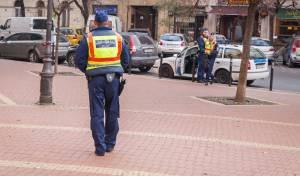 שוטרים על יד בית כנסת בבודפשט, הונגריה