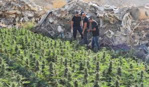 """גניבות מצה""""ל וסמים: פשיטה משטרתית בביר הדאג'"""