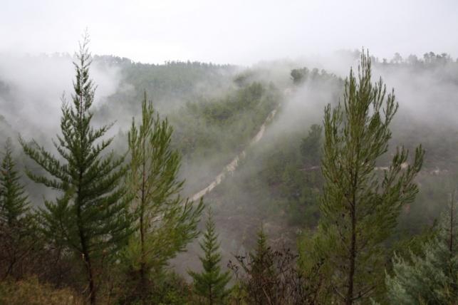 התחזית: סוער וגשום, חשש להצפות בערים
