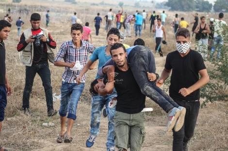 פינוי הפורע הפלסטיני - בעזה יגיבו? נער פלסטיני נהרג מירי הצבא