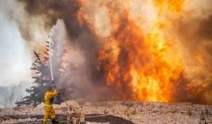 השריפה בשורש; הלוחמים לקראת שליטה