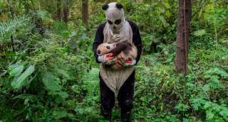 19 תמונות מדהימות וחכמות מתחרות הצילום העולמית של 'סוני'