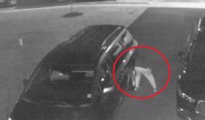 צפו: ניקוב צמיגי מכוניות של חרדים מלייקווד
