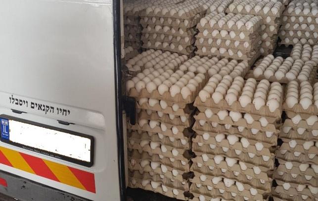 הביצים שהוחרמו