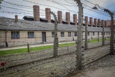מחנה הריכוז אושוויץ-בירקנאו בפולין - תערוכת  הכלים הגנובים מאושוויץ - בוטלה
