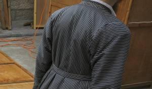 לבוש הזברה