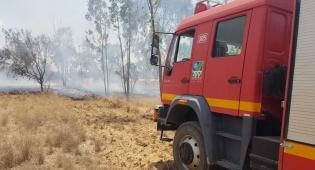 אחרי תקופת שקט: שוב שריפה בדרום הארץ