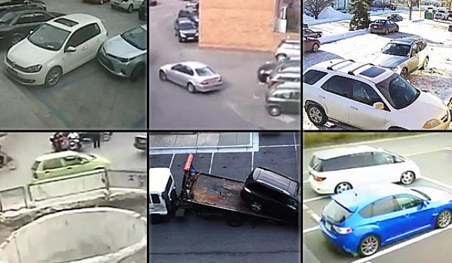 צפו במקבץ: הנהגים הגרועים בעולם