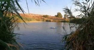 טיול לבין הזמנים: אגם דליות ליד הכנרת