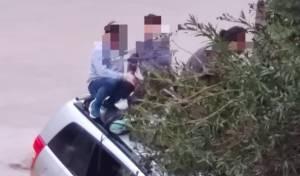 האב והילדים על הגג