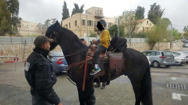 הילד והסוס, אתמול