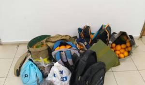"""4 גנבו אגוזי פקאן ב""""איילת השחר"""" ונעצרו"""