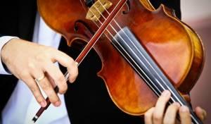 כינור בשווי מליונים הושב לבעליו