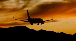 בואינג 737 - טיסה מברלין שבה בגלל פגיעת ציפור