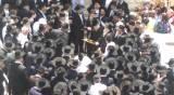 בן רבה של ירושלים הובא למנוחות • תיעוד