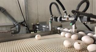 משרד החקלאות חשף מכונת שטיפת ביצים