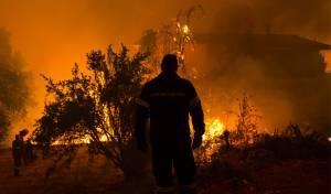 השריפות ביוון