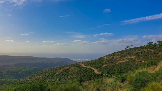 הר הכרמל